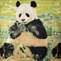 флис зеленый Панда раппорт 135см, ш.165