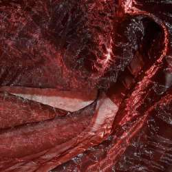 Органза жатая красная темная с черным отливом хамелеон ш.275