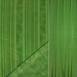 Сатин зеленый в темно зеленые полосы ш.148