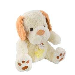 собака біла з рудими вушками і шарфом