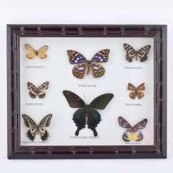 Картина бабочки под стеклом рельефная рамка 29 х 34 см