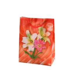 Пакет подарунковий 16х12х6 см з ліліями червоний